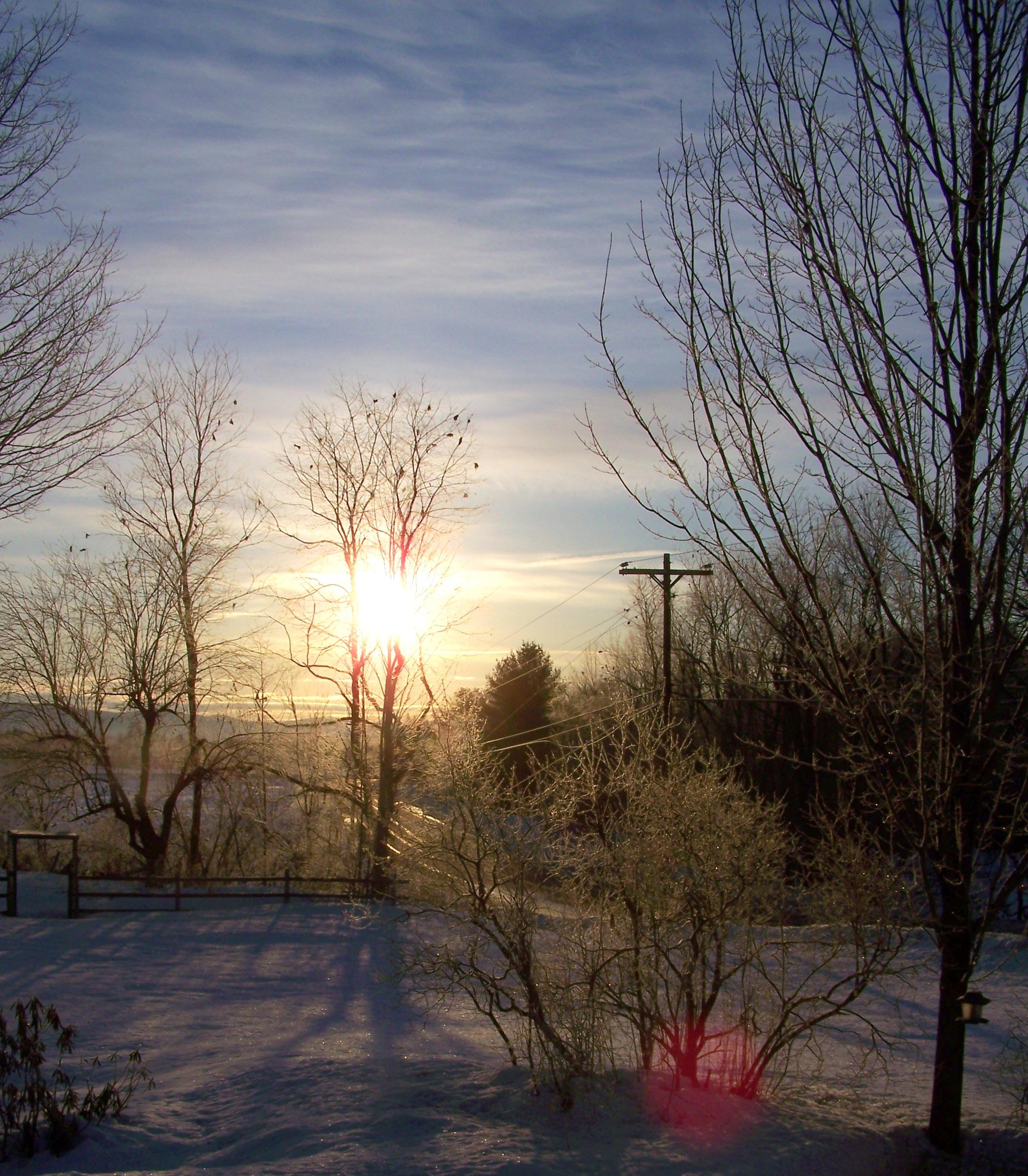 frostmorn1